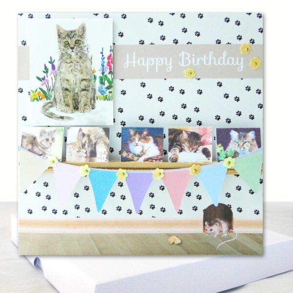 Cat Lovers Boxed Birthday Card : Unique Luxury Card