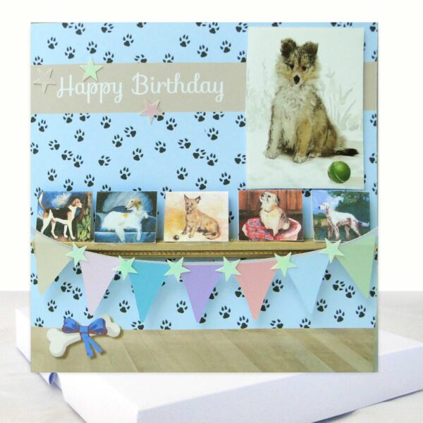 Dog Lovers Boxed Birthday Card