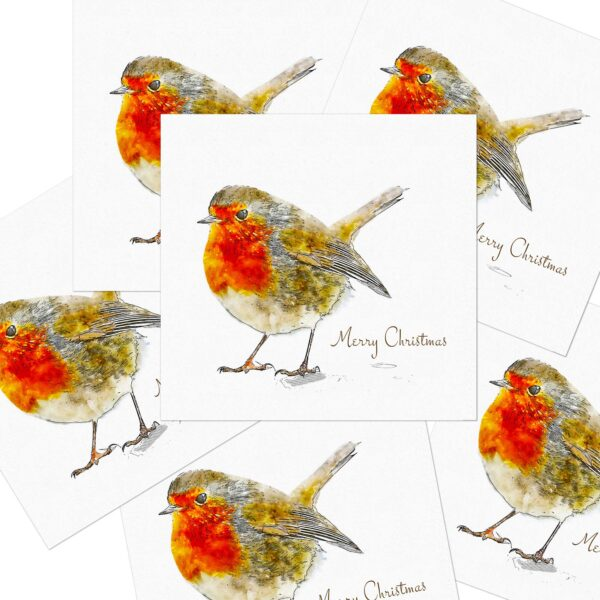 Robin in the Snow Christmas Cards6 pack