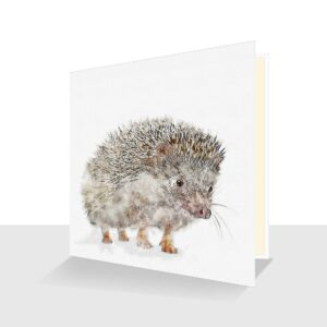 Hedgehog Greeting Card : Watercolour and ink
